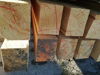 Budujesz dom i szukasz odpowiedniego drewna?